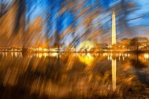 Washington DC Wonderland