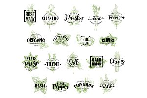 Herb and spice icons with lettering