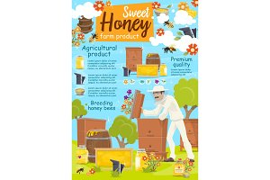 Beekeeper at apairy, beekeeping farm