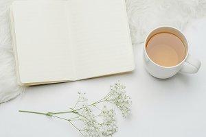 White Stock Photo, Tea, Flower