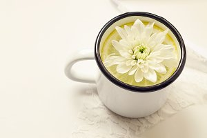 White Stock Photo, Cup, Flower