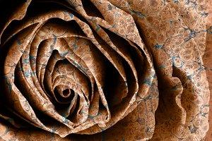 Vintage Organic Rose