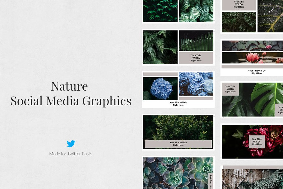 Nature Twitter Posts