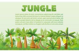 Rainforest palm trees landscape
