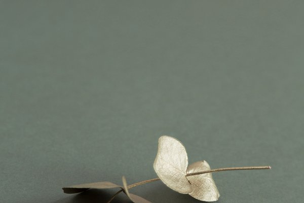 Festive Botanical Photo w/Copy Spac…