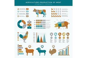 Agriculture farming infographic