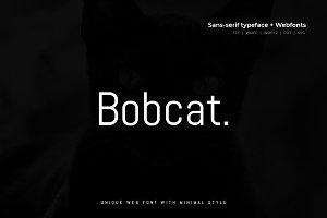 Bobcat - Modern Typeface + WebFont