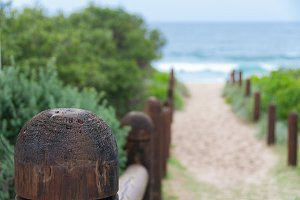 Wooden poles to beach entrance