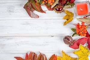 Chestnut and autumnal  leaves on the