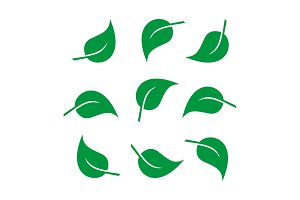 Leaves icon vector set. vector and
