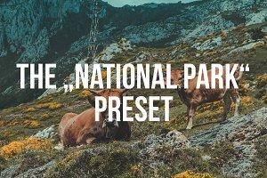 """""""NATIONAL PARK"""" Lightroom Preset"""