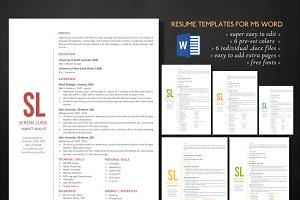 Clean 2 in 1 simple Word resume