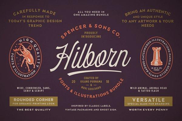 Display Fonts: Spencer & Sons Co. - S&S Hilborn Font Bundle