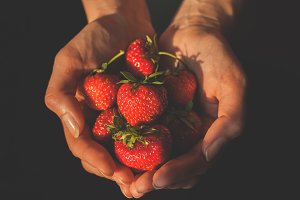 Strawberries in hands 1