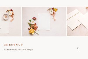 Stationery Mock Ups - Chestnut