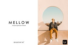 Lightroom Preset | Mellow HALFTOUNE by  in Actions