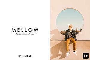 Lightroom Preset | Mellow HALFTOUNE