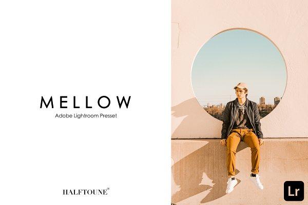 Add-Ons: HALFTOUNE - Lightroom Preset | Mellow HALFTOUNE