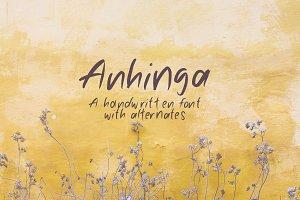 Anhinga | Handwritten Font