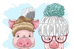 Two cute little pigs in wool hats.