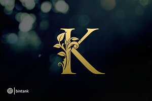 Luxury Gold K Logo