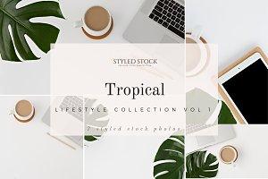 Tropical Stock Photo Bundle Vol 1