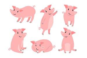 Little piggy character. Cartoon