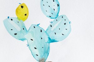 Watercolor hand drawn cactus
