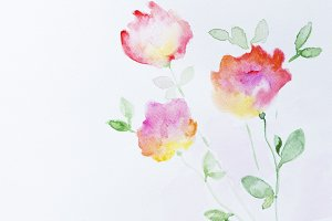 Flowers watercolor illustration.