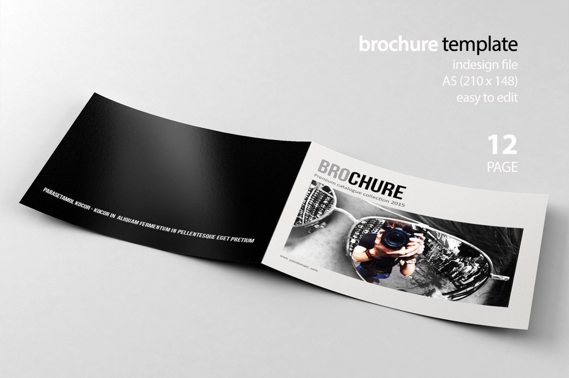 Indesign brochure brochure templates creative market for Indesign templates brochure