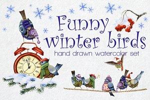 Funny winter birds watercolor set