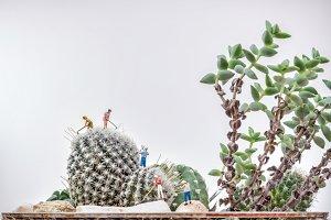 Miniature gardeners
