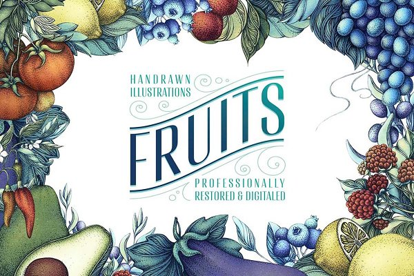 Illustrations and Illustration Products: HangTran - Fruits Illustration