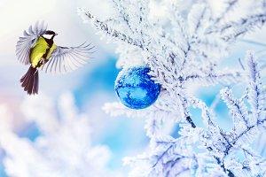 Christmas bird on the tree