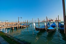 Venice 156.jpg
