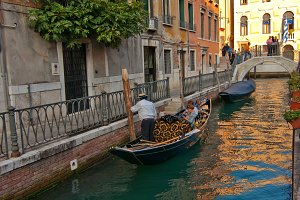 Venice 432.jpg