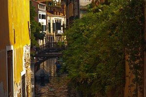 Venice 876.jpg
