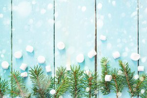 Christmas border with branch of fir