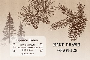 Spruce Trees Set, hand drawn