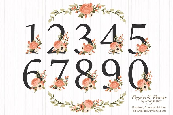 Peach Floral Numbers With Vectors