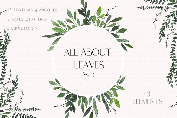 Illustrations and Illustration Products: MariePierLaf - All About Leaves 3 - Watercolor