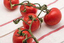 fresh tomatoes on the vine