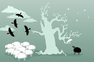 Odd bird and black sheep