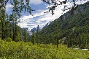 The valley of the Shavla river.Altai
