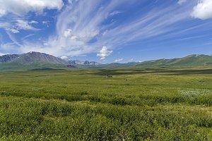 Oroi Mountain Pass, Altai, Russia
