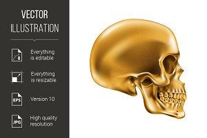 Metallic Skull