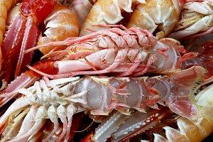 lobster up at the fish markett