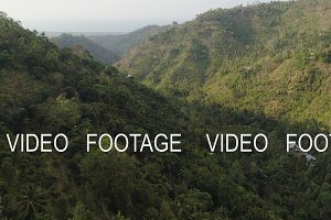 tropical landscape rainforest and