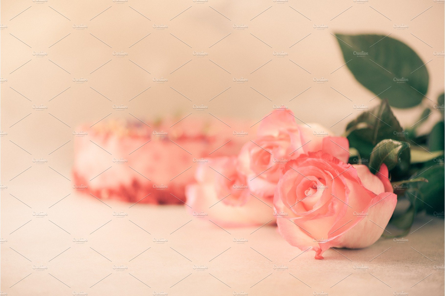 Bunch Of Pink Roses On Concrete Nature Photos Creative Market