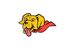 Super Yellow Labrador Retriever Wear
